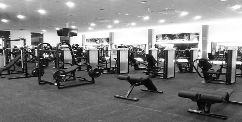 Como fabricantes de equipamiento de fitness