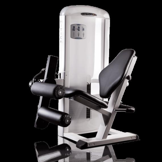 Máquina Femoral Sentado MP10